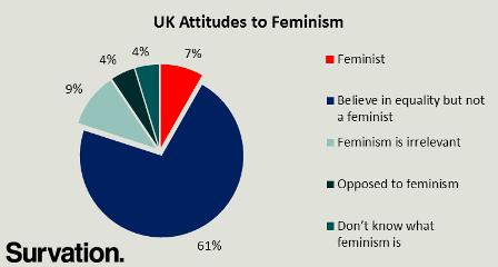 feminism pie